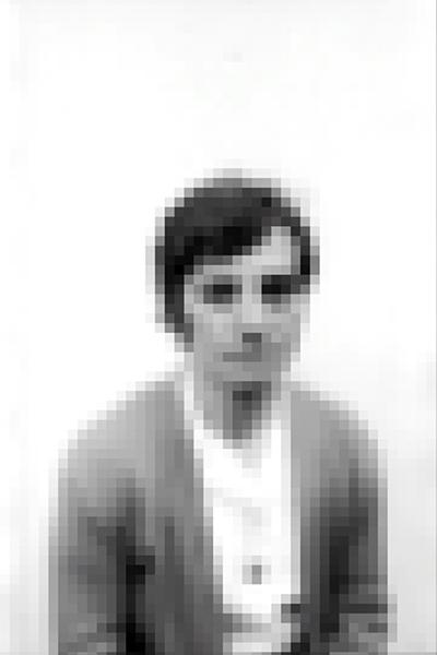 http://reinaldoloureiro.com/files/gimgs/52_02.jpg