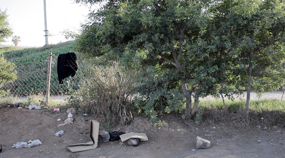 http://reinaldoloureiro.com/files/gimgs/55_violencia-08.jpg